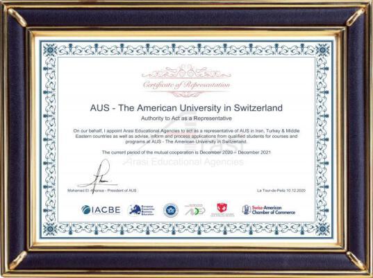 American University (Switzerland)